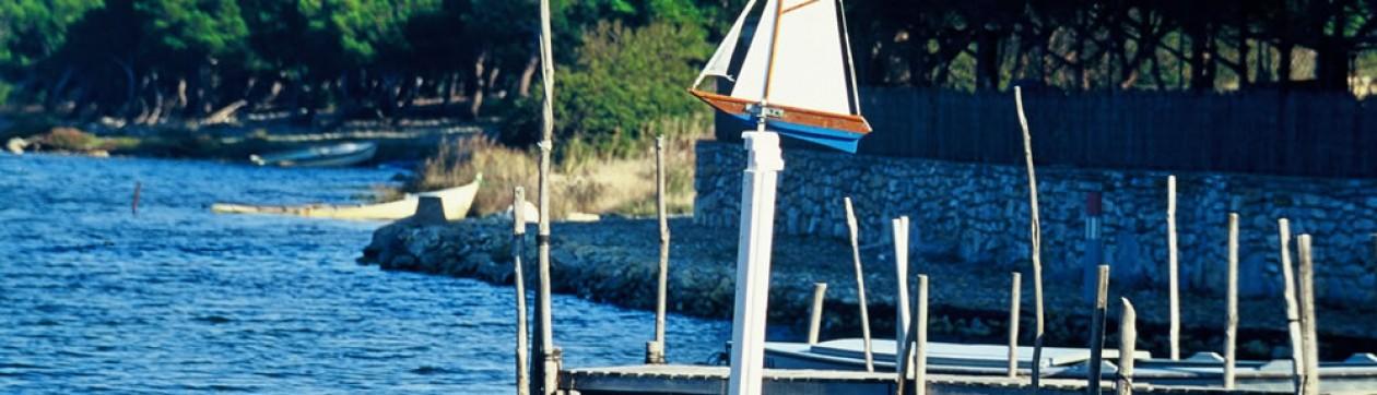 cropped-Fitou-03-13-2010-00755.jpg